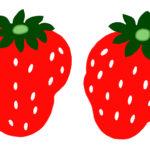 イチゴのイラスト無料素材1