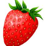 イチゴのイラスト無料素材2