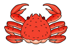 カニ・蟹イラスト素材