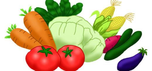 野菜のイラスト無料素材